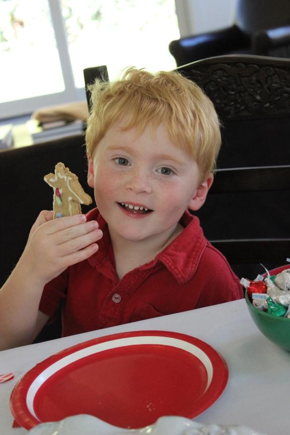 foodstirs-gingerbread-cookie