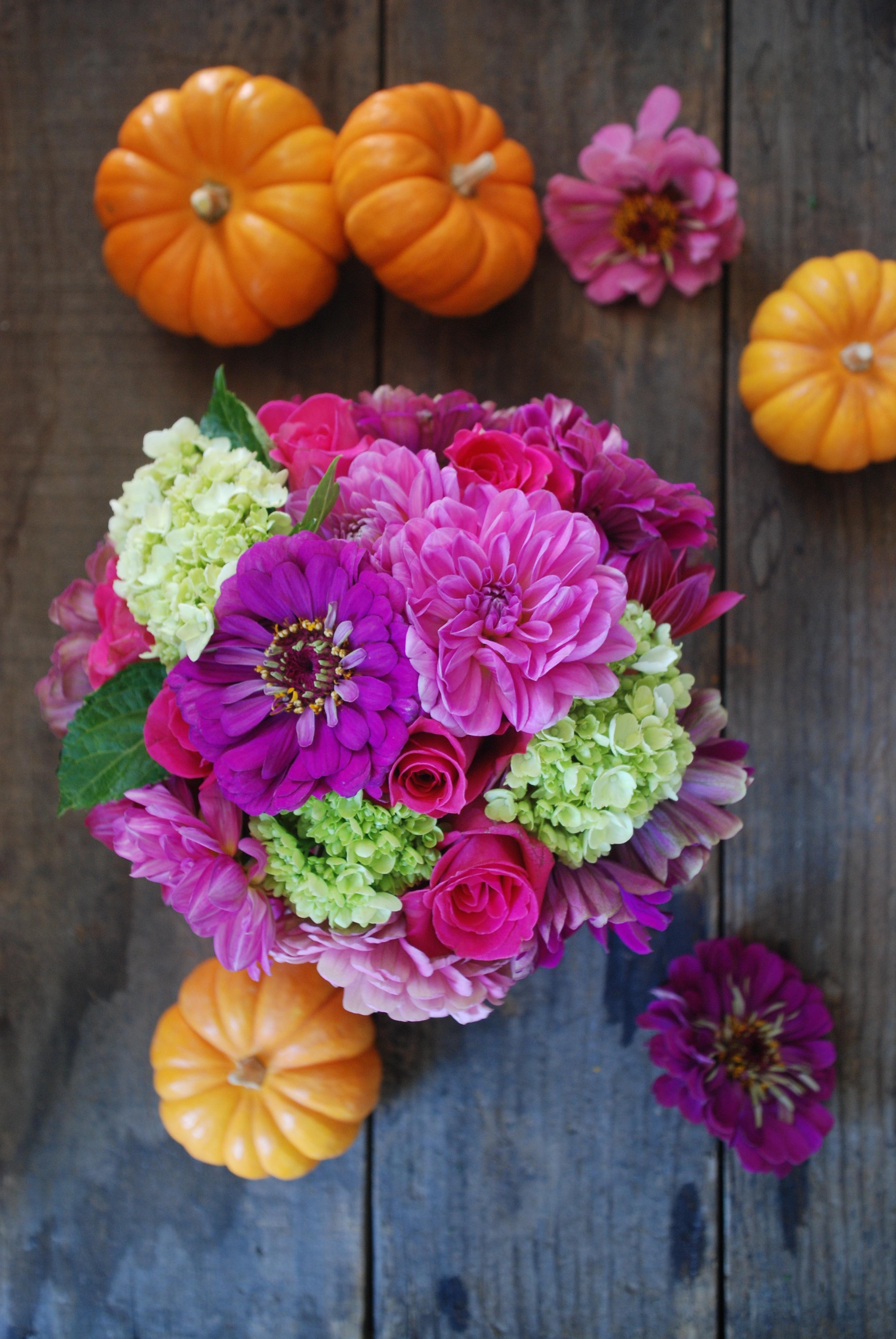 Fall flowers jane can dsc1247 mightylinksfo