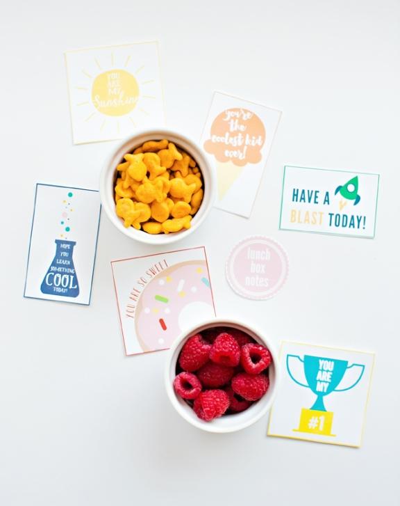 2-lunchbox-notes-kids-pretty-girl-designs
