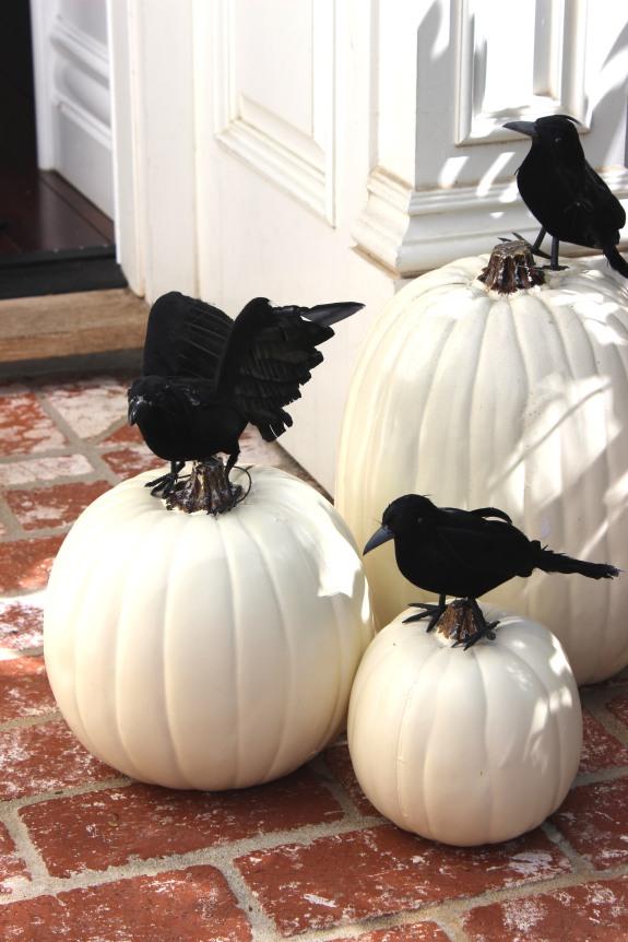 raven-pumpkins-1